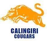Calingari
