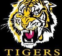 Manjimup Tigers