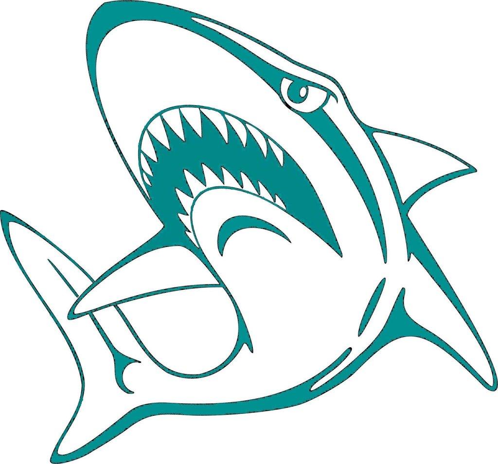 Albany Sharks