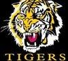 Manjimup Tigers Logo