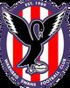 Warnbro Swans Logo