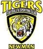 Newman Tigers Logo