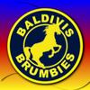 Baldivis Logo