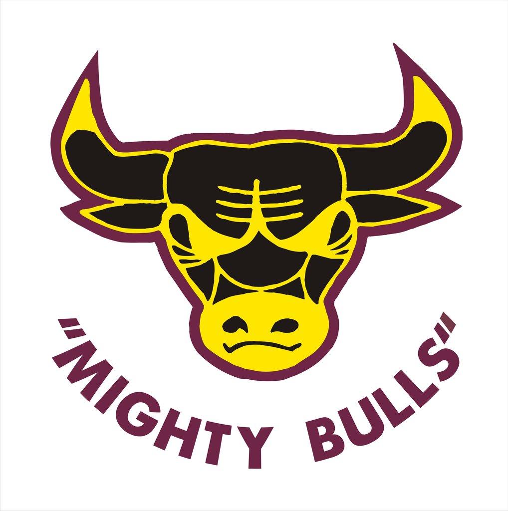 Quinns Bulls