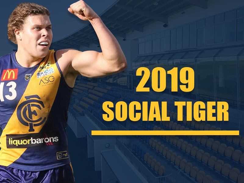 Social Tiger