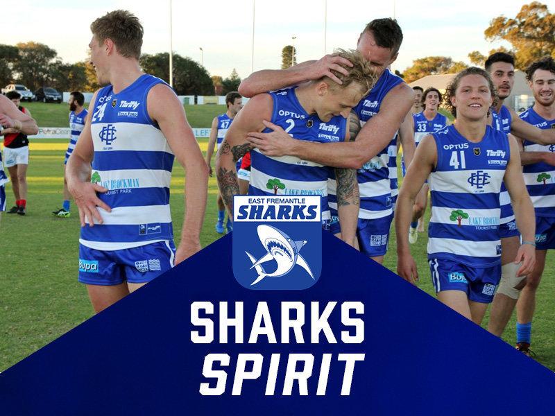 Sharks Spirit