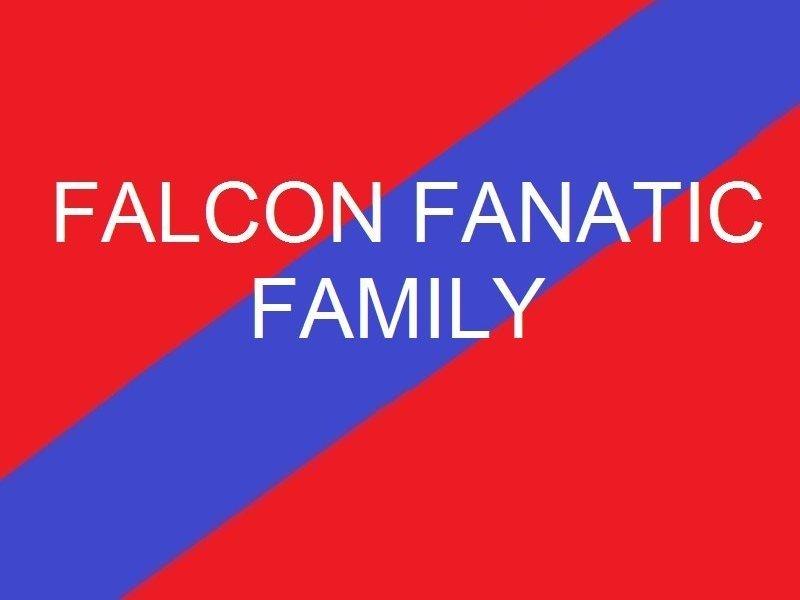 Falcon Fanatic Family