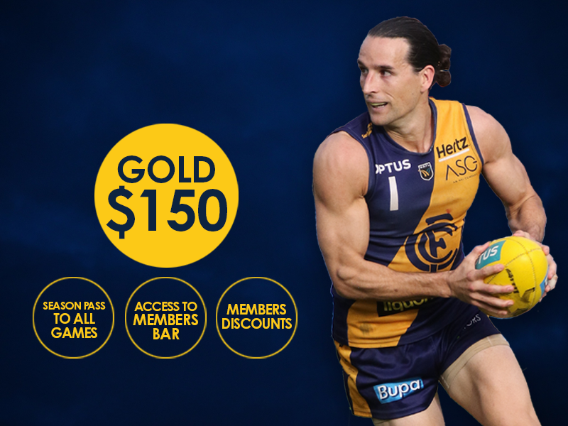 Gold Member - Concession
