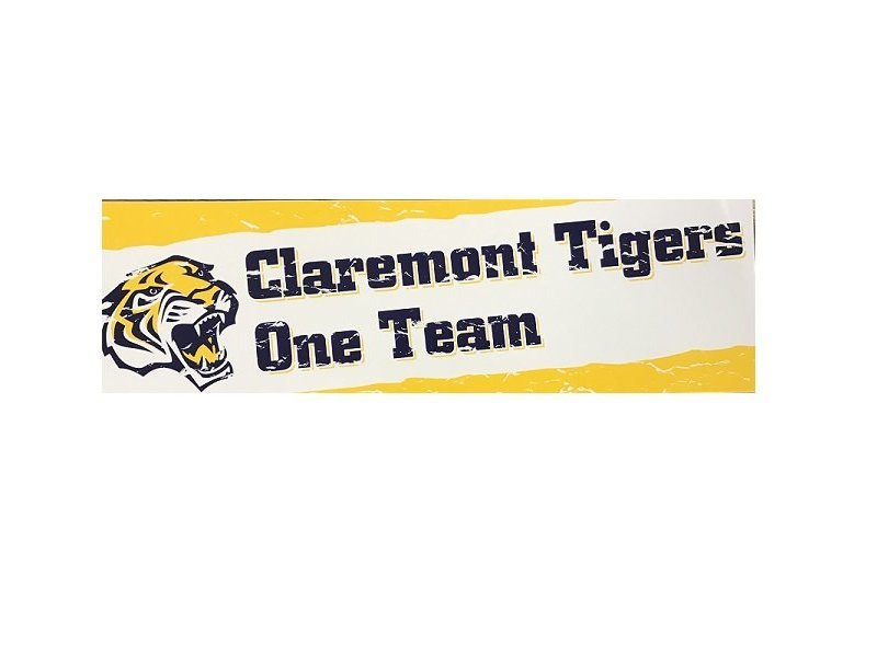 One Team Bumper Sticker