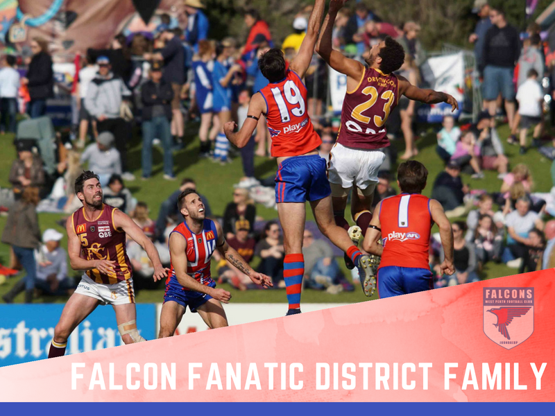 Falcon Fanatic - District Family