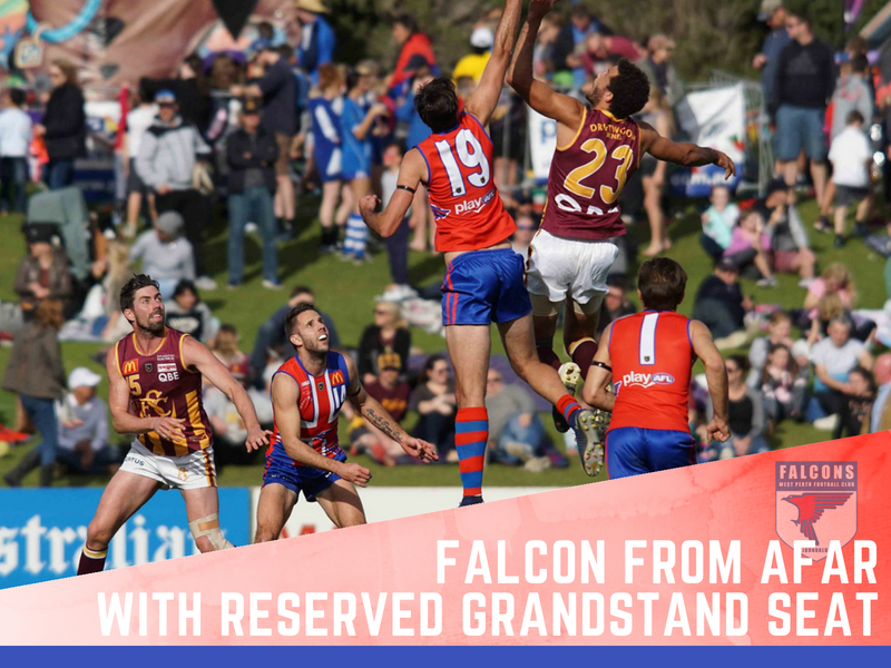 Falcon from Afar      Reserved Grandstand seat