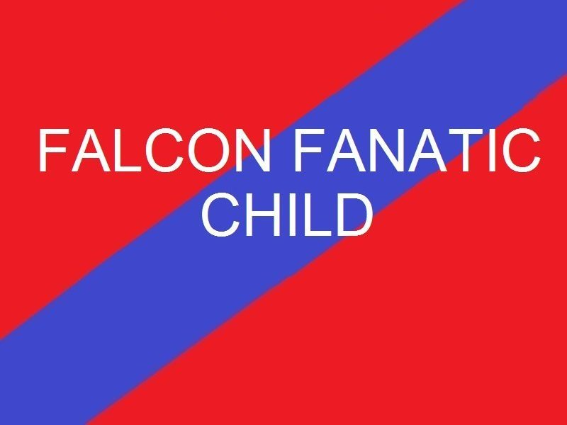 Falcon Fanatic  Child - Youth